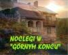 Bieszczady - noclegi w górnym końcu - noclegi Wołkowyja